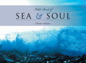 Little Book of Sea & Soul